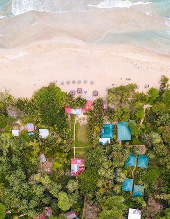 Red Frog Bungalows Surf Resort